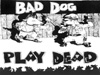 Bad Dog Play Dead